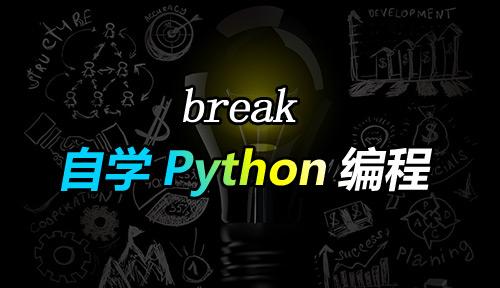 自学Python编程【第三十二节】break