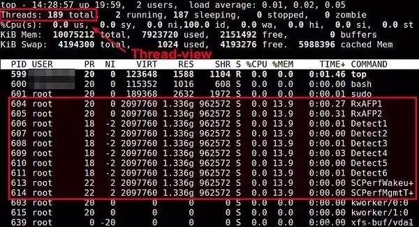 在Linux系统中有哪些命令可以用于查看进程?