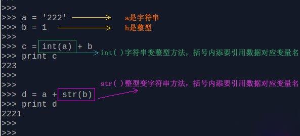 零基础如何学好Python 之int 数字整型类型 定义int()范围大小转换