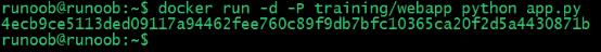 Docker 容器使用